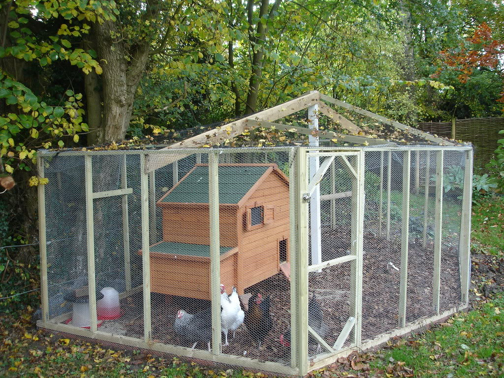 Proposal for backyard chickens moving forward