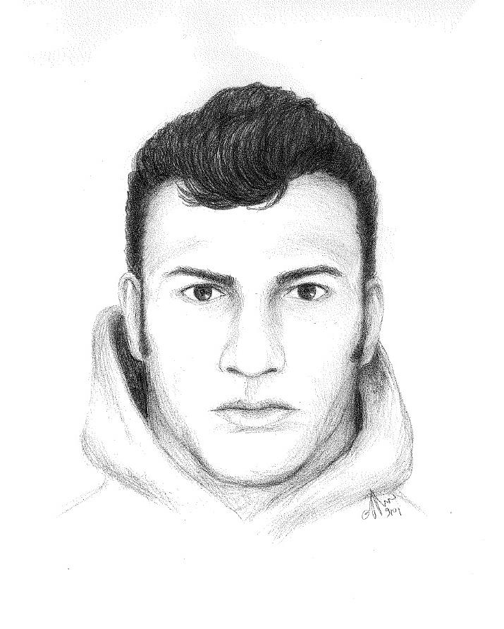 Winnebago Street Suspect Composite - November 2016